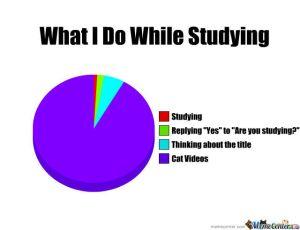 Study meme